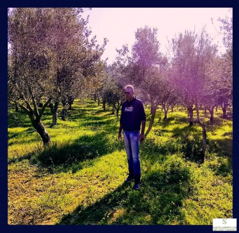 george sakellaropoulos olives olive oil