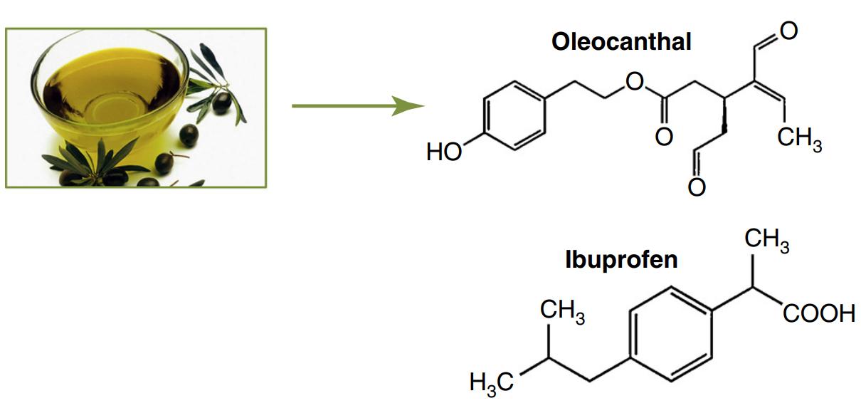 ελαιοκανθάλη ibuprofen ελαιόλαδο